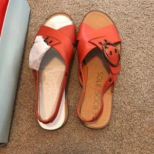 Sole society Misha sandal